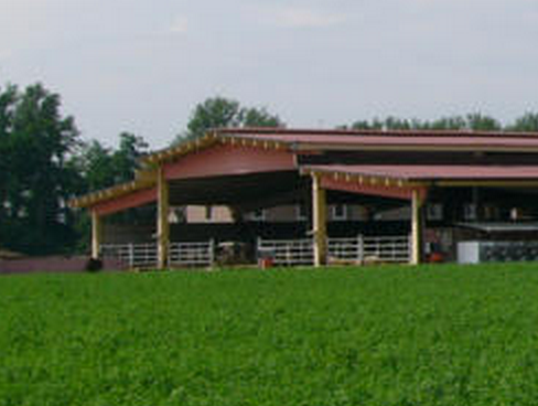 Casa Ferrarini